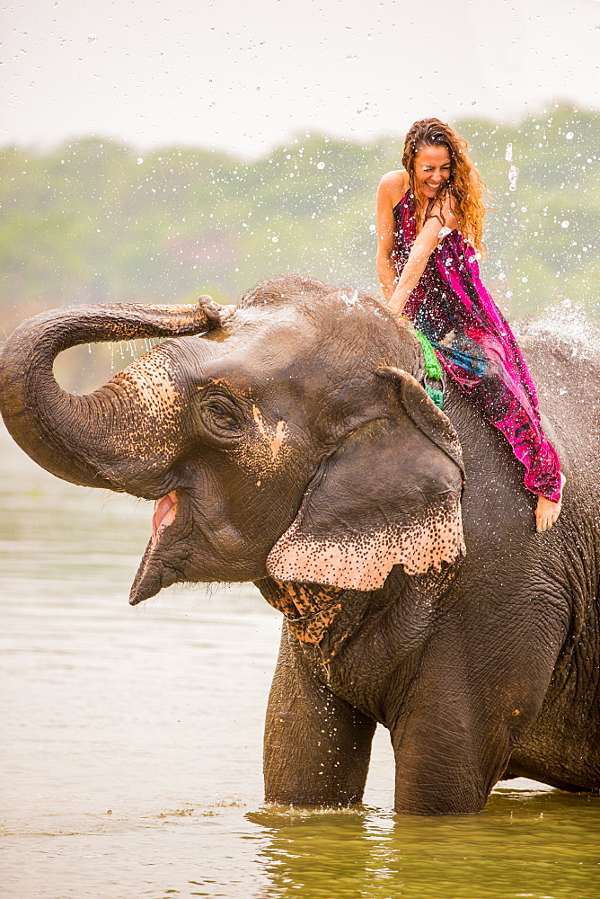 Woman sitting on an elephant getting an elephant shower, Chitwan Elephant Sanctuary, Nepal, Asia