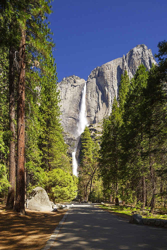 Yosemite Falls in full flow during spring in Yosemite National Park, UNESCO World Heritage Site, California, United States of America, North America