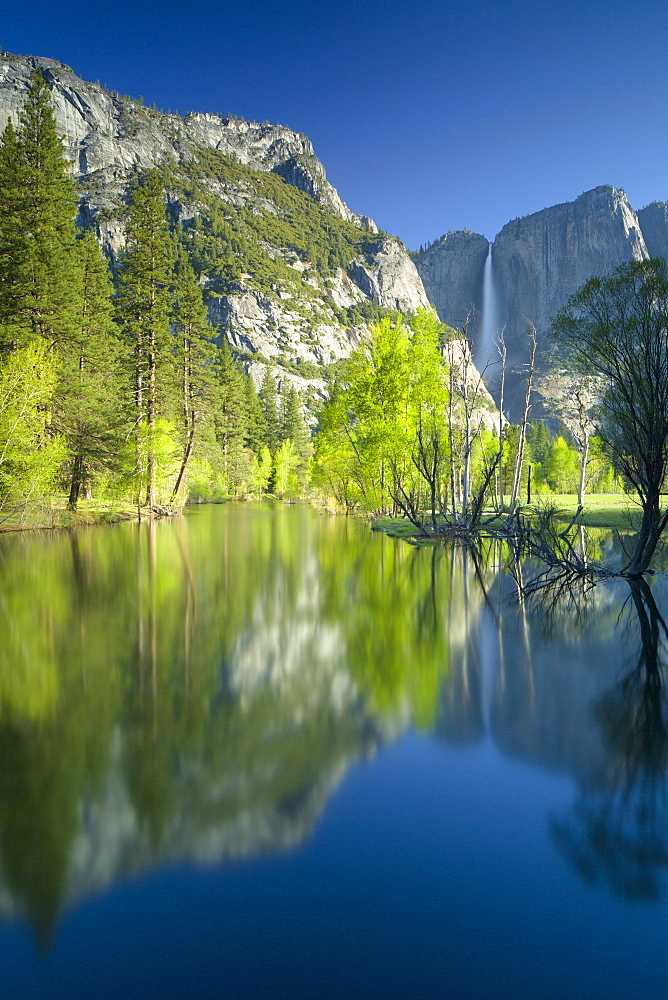 Yosemite Falls and Merced River in spring, Yosemite National Park, UNESCO World Heritage Site, California, United States of America, North America
