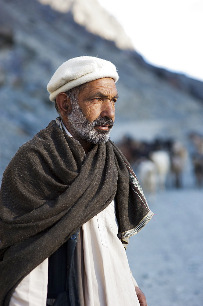 A shepherd near Gilgit, Gilgit-Baltistan, Pakistan, Asia