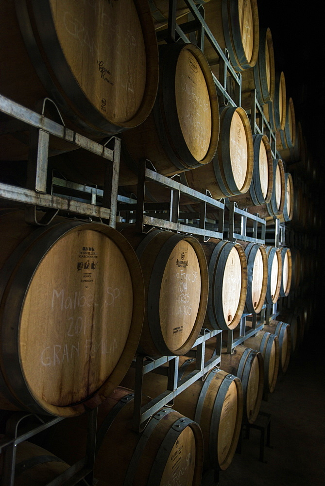 Wine in oak barrels in the Uco Valley near Mendoza, Argentina, South America