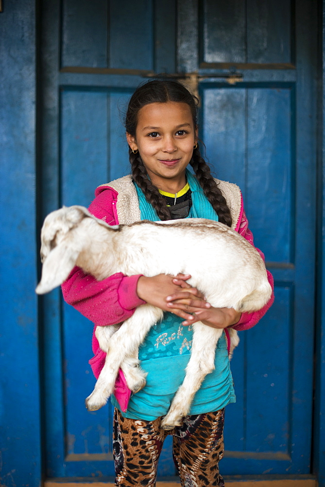 A little girl holding a goat in a small village in Nepal, Asia