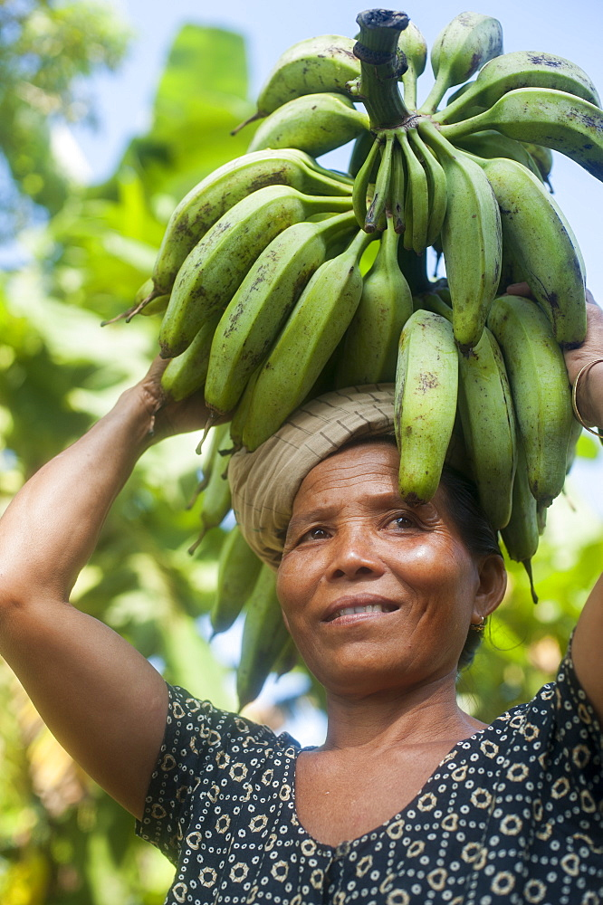 A woman carries freshly harvested bananas on her head, Chittagong Hill Tracts, Bangladesh, Asia - 1225-868