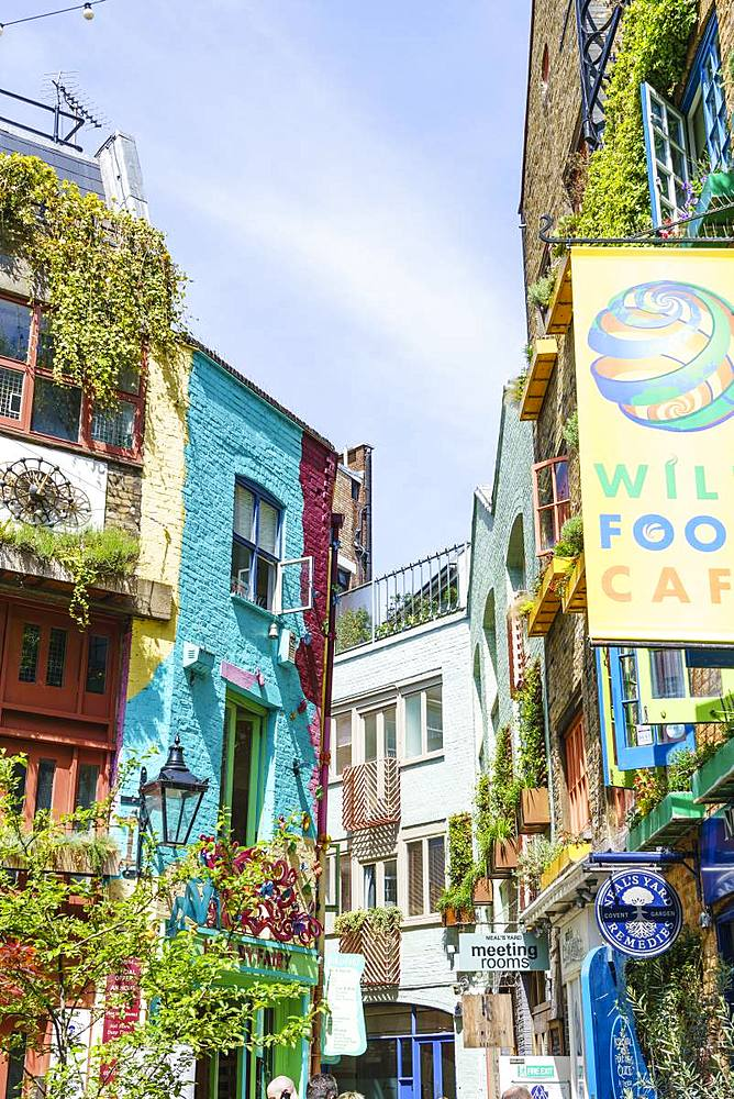 Neal's Yard, Covent Garden, London, England, United Kingdom, Europe - 1226-747