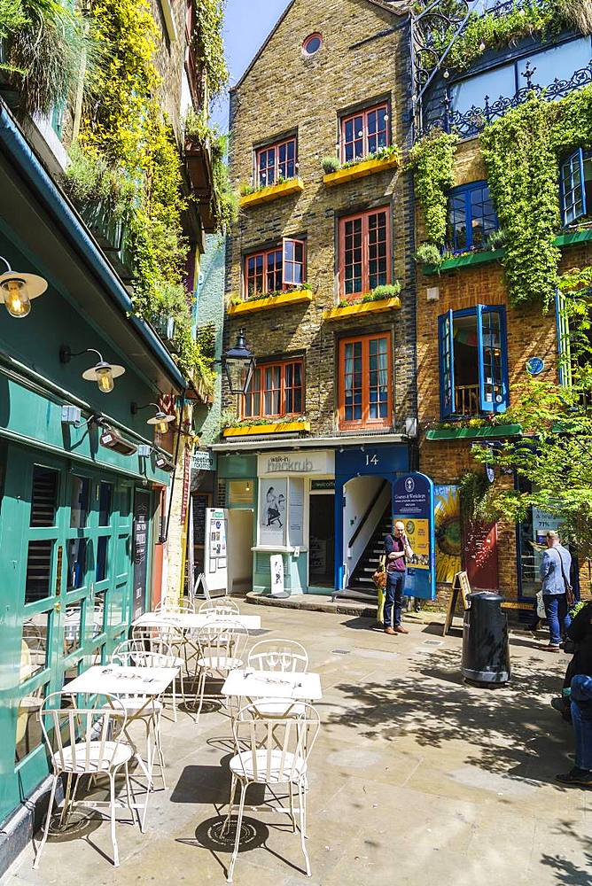 Neal's Yard, Covent Garden, London, England, United Kingdom, Europe - 1226-749