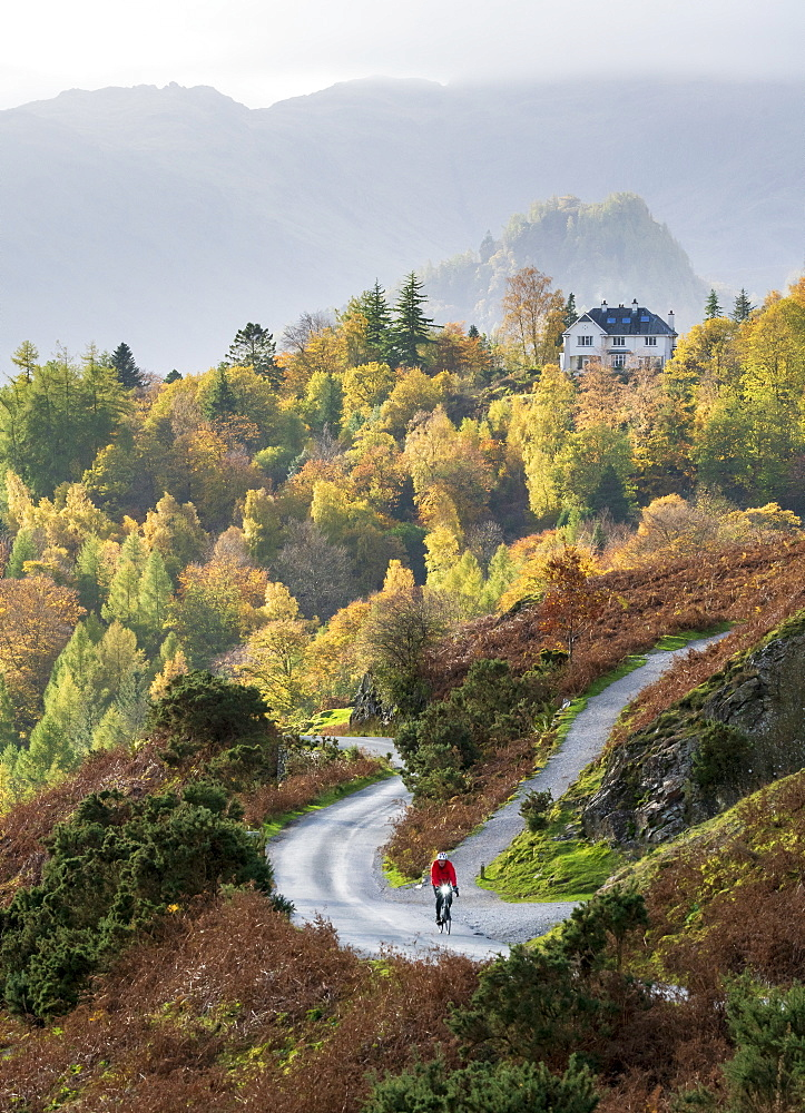 A lone cyclist on the lower slopes of Catbells with distant Castle Crag, and Manesty woods in Borrowdale, October 2018 - 1228-121