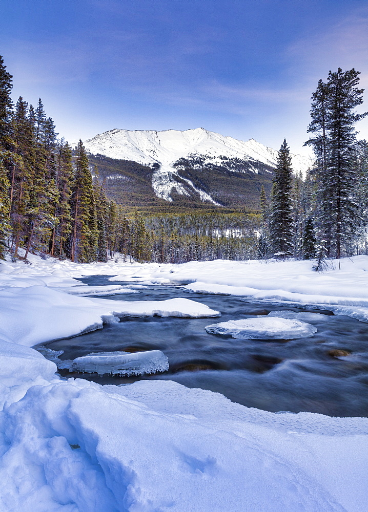 The Sunwapta River which is a tributary of the Athabasca River in jasper National Park, Alberta, Canada. - 1228-132
