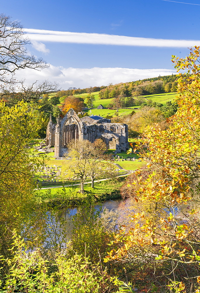 Bolton Abbey and the River Wharfe, in Lower Wharfedale, The Yorkshire Dales National Park, Enhland, United Kingdom, Europe - 1228-143