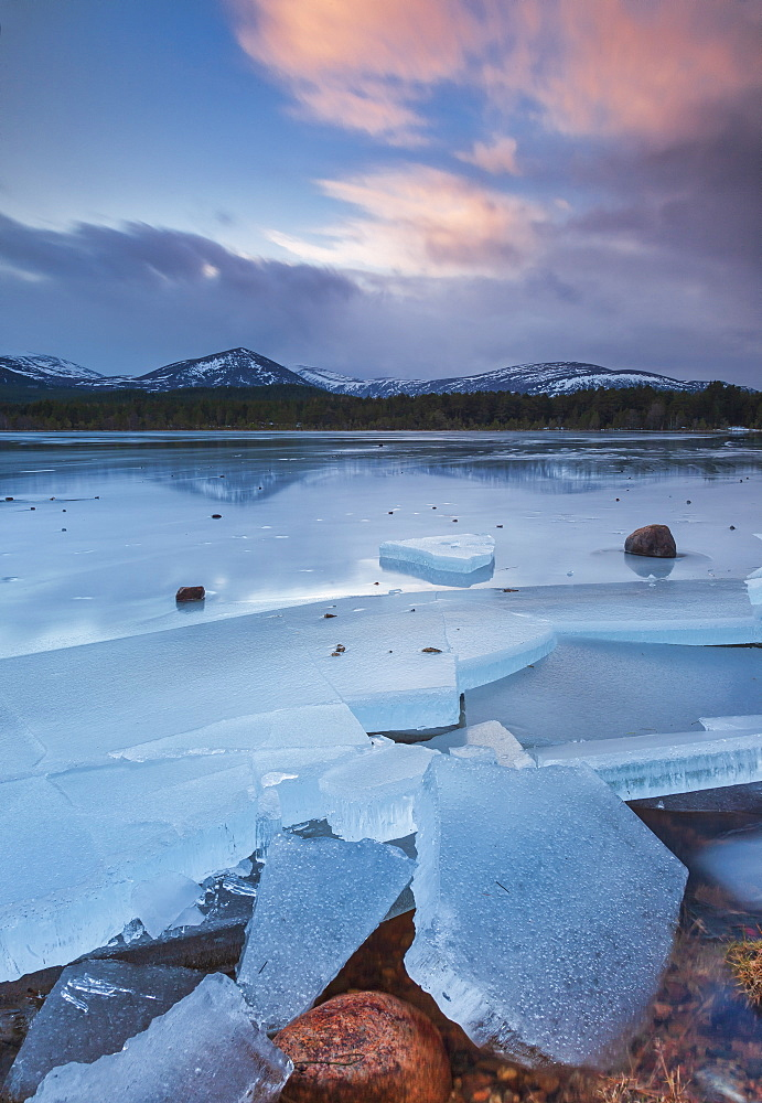 Ice sheets in severe winter weather on Loch Morlich, at daybreak, in the Badenoch and Strathspey area of Highland, Scotland, United Kingdom, Europe, Europe