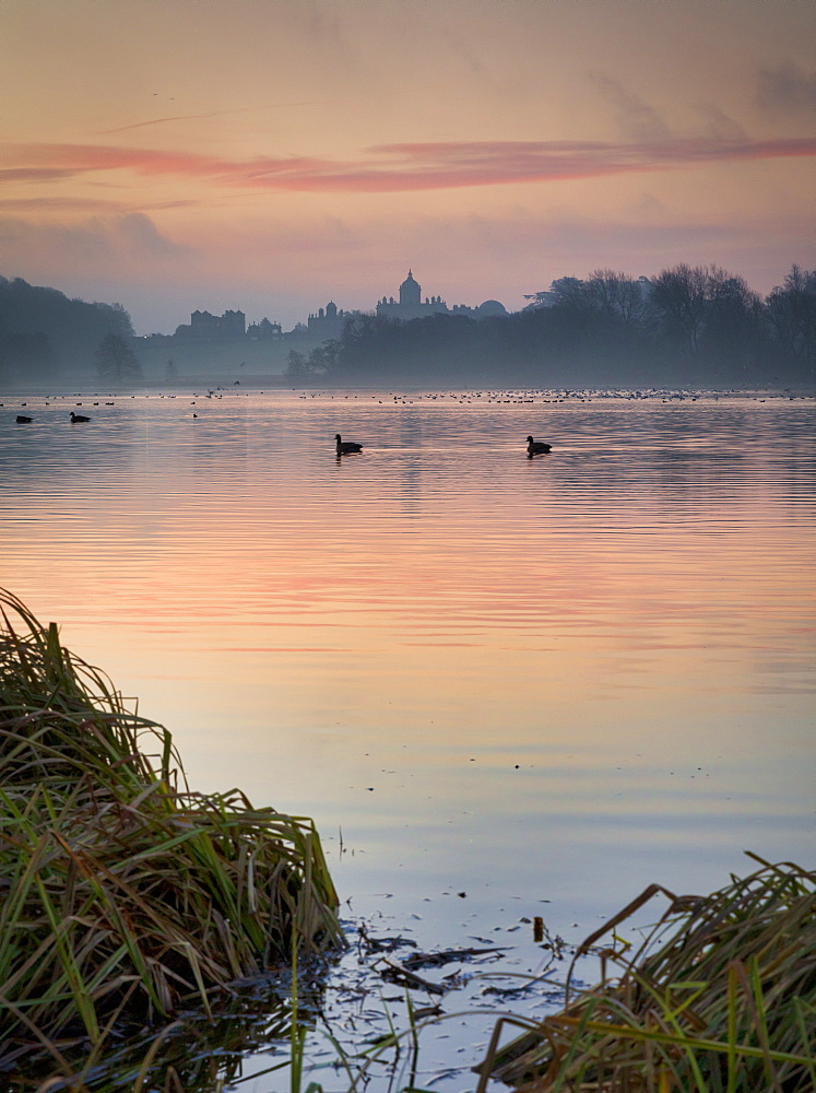 Winter sunrise over The Great Lake, Castle Howard Estate, North Yorkshire, Yorkshire, England, United Kingdom, Europe - 1228-177