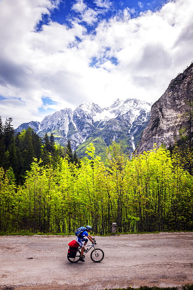 A lone cyclist travels along a mountain road with trees and the Julian Alps in the background, Slovenia, Europe - 1231-5