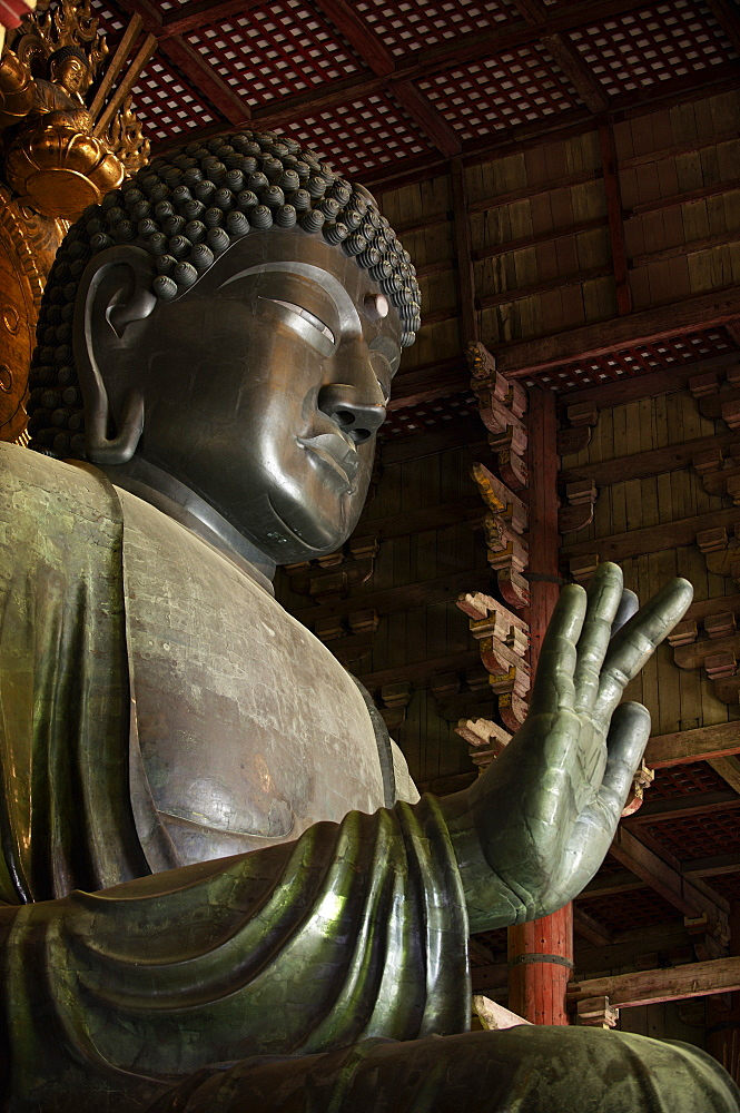 The Great Buddha, Todai-ji temple, UNESCO World Heritage Site,  Nara, Japan, Asia - 1238-139