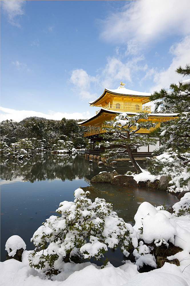 Kinkaku-ji Temple (Golden Pavilion), UNESCO World Heritage Site, in winter, Kyoto, Japan, Asia