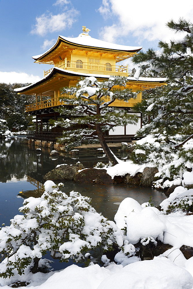 Golden Pavilion (Kinkaku-ji), UNESCO World Heritage Site, in winter, Kyoto, Japan, Asia