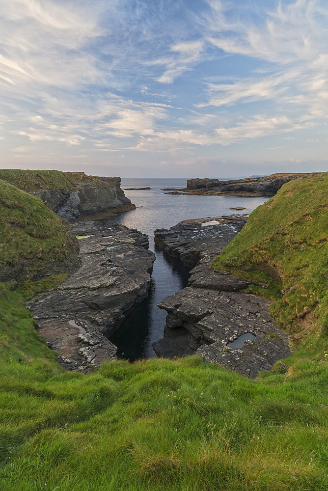Ross, Loop Head, County Clare, Munster, Republic of Ireland, Europe - 1240-218