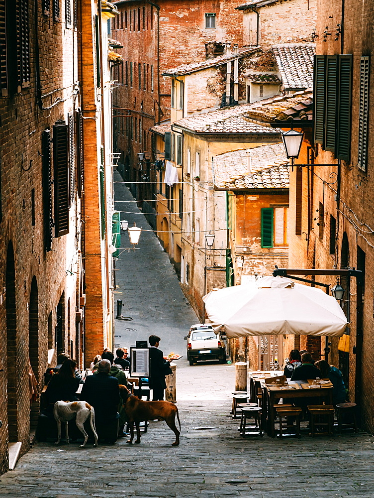 Small alleyway with quaint restaurant in Siena, Tuscany, Italy, Europe