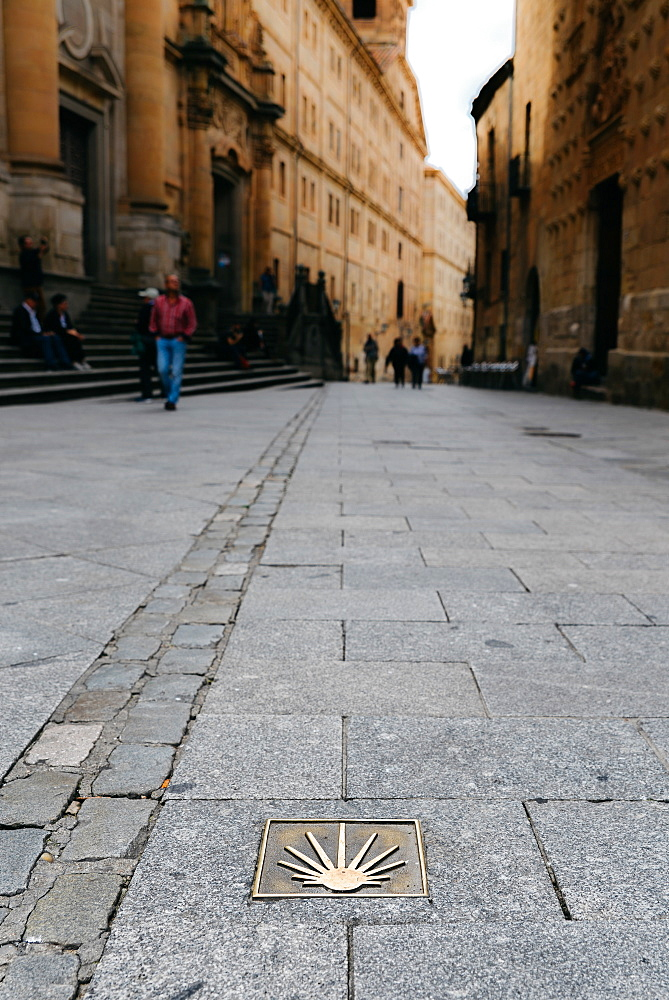 Camino de Santiago spiritual trail marker on the road in Salamanca, Castilla y Leon, Spain, Europe - 1243-274