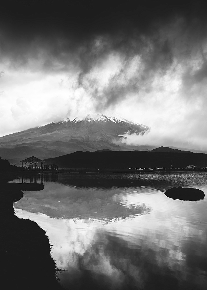 Cotopaxi National Park, Ecuador (black and white) - 1243-31