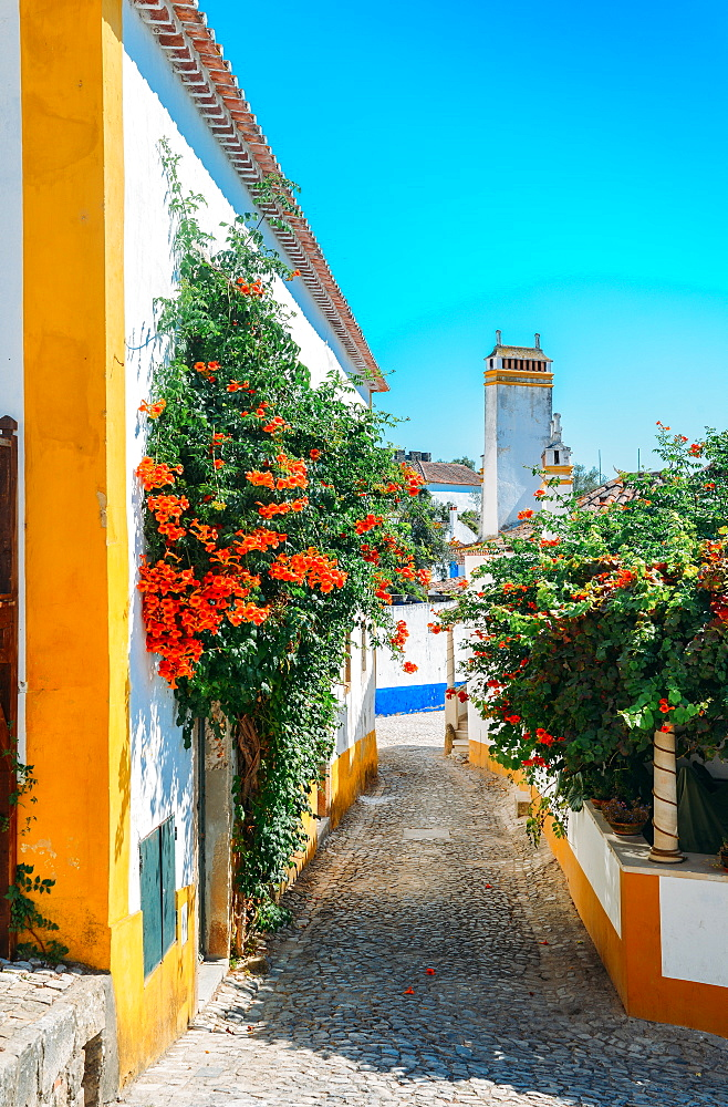 Narrow quaint streets within the ancient fortified village of Obidos, Oeste, Leiria District, Portugal, Europe - 1243-342