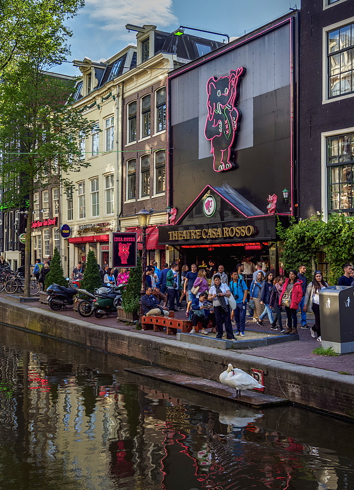 Casa Rosso Theatre, Red Light District, Oudezijds Achterburgwal Canal, De Wallen, Amsterdam, North Holland, The Netherlands, Europe - 1245-1015