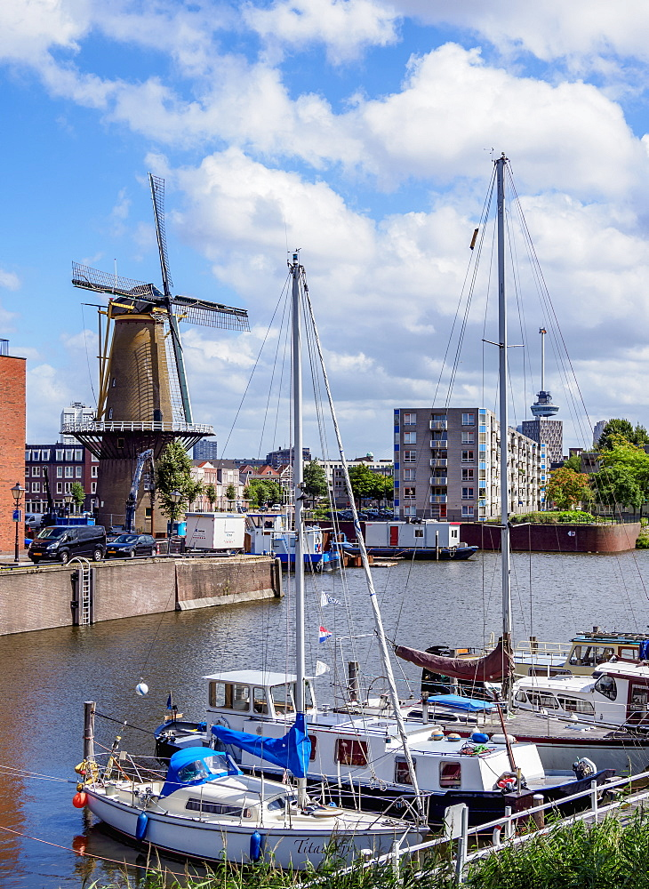 Middenkous Port and Windmill in Delfshaven, Rotterdam, South Holland, The Netherlands, Europe - 1245-1055
