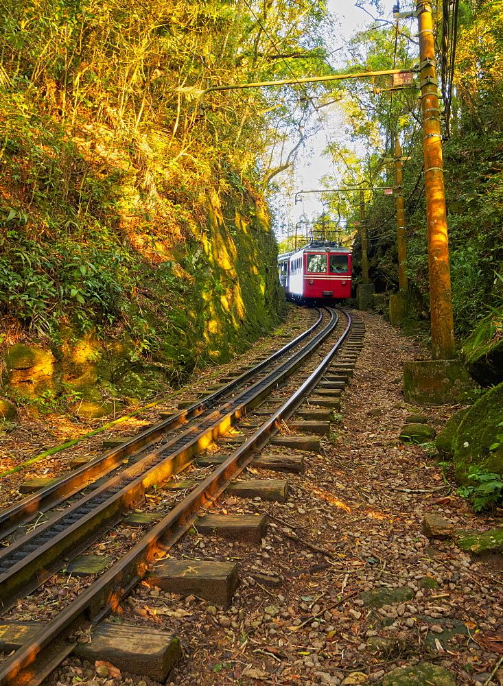 Corcovado Train, Rio de Janeiro, Brazil, South America