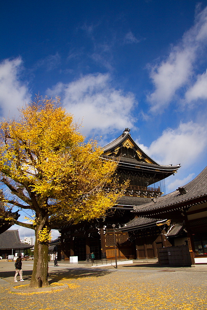 The Higashi Honganji Shin Buddhist Temple, Kyoto, Japan, Asia - 1262-110