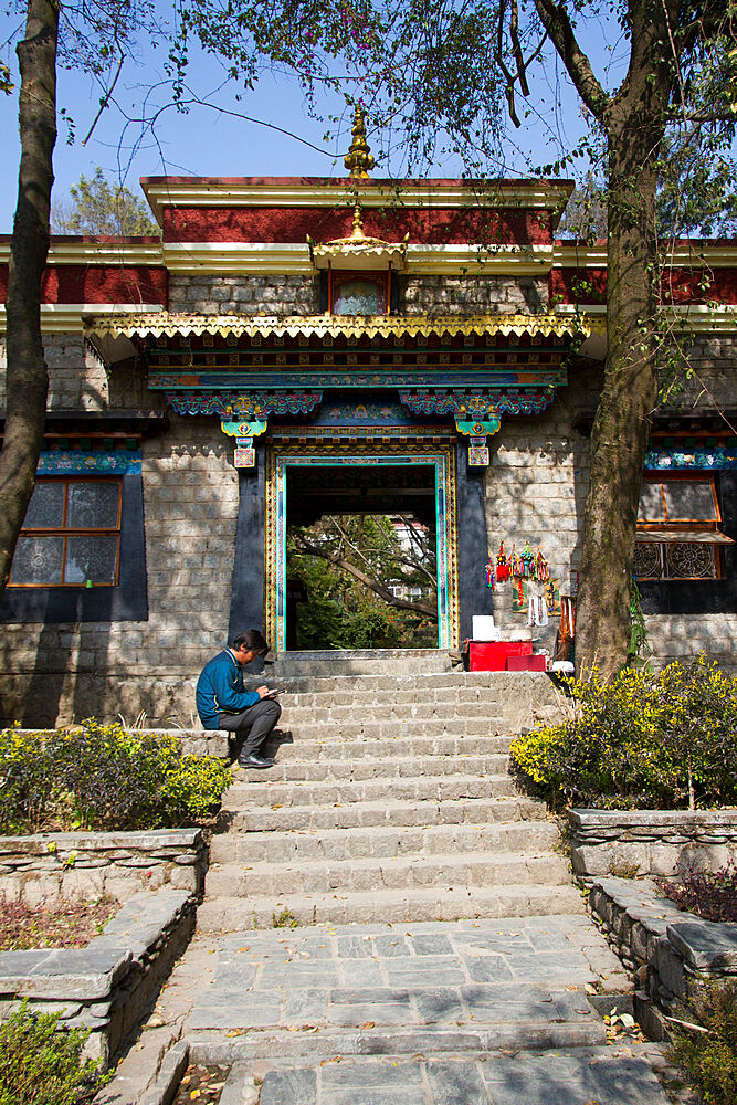 The Norbulingka Tibetan Institute of Tibetan Arts and Culture, Dharamsala, Himachal Pradesh, India, Asia - 1262-168