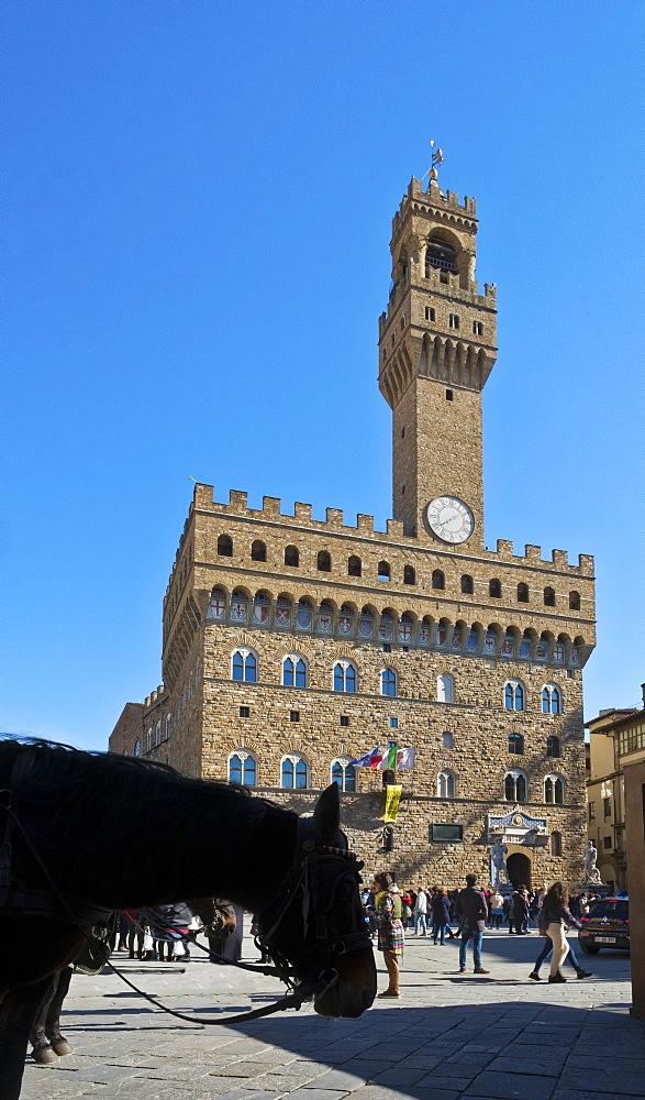 Palazzo Vecchio, Florence, UNESCO World Heritage Site, Tuscany, Florence, Italy, Europe - 1264-24