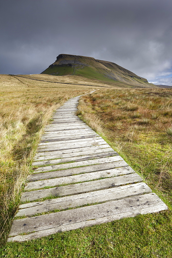 Boarded footpath leading to Pen-Y-Ghent Hill in the Yorkshire Dales, Yorkshire, England, United Kingdom, Europe - 1266-94