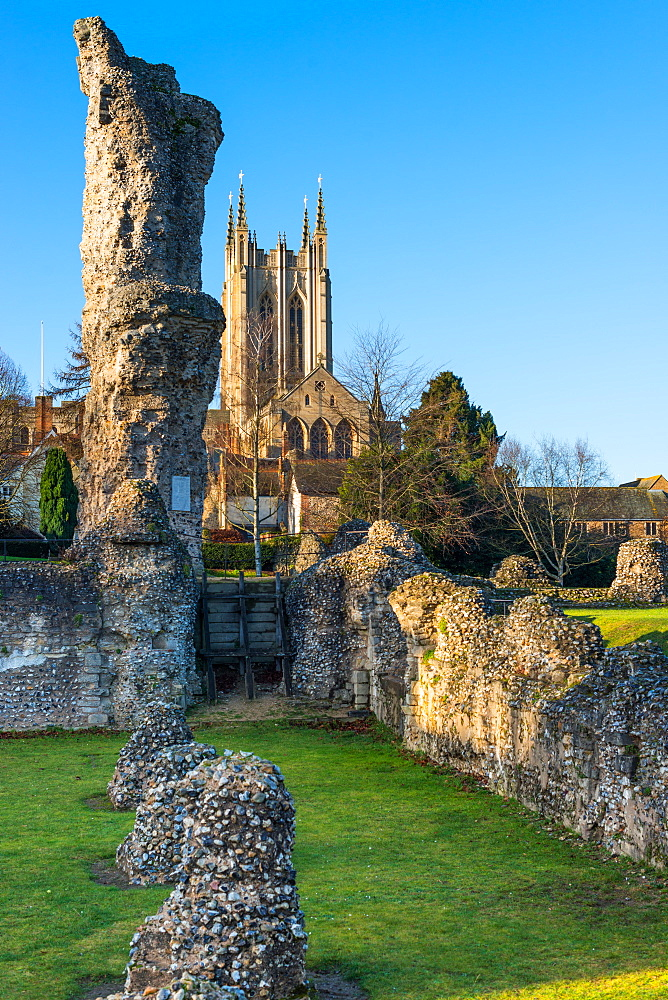Ruins of the Abbey of Bury St. Edmunds, historic Benedictine monastery, with St. Edmundsbury Cathedral, Bury St. Edmunds, Suffolk, England, United Kingdom, Europe - 1267-231