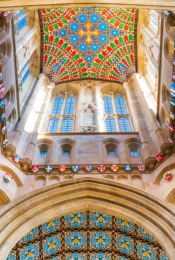 Decorative ceiling of St. Edmundsbury Cathedral tower, Bury St. Edmunds, Suffolk, England, United Kingdom, Europe - 1267-238