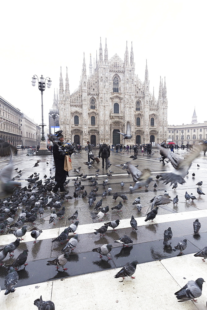 A person feeds pigeons in Piazza Duomo (Cathedral Square), Milan, Lombardy, Northern Italy, Italy, Europe - 1269-96