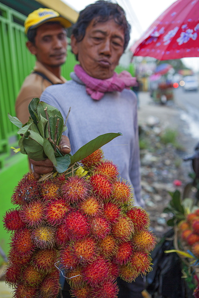 A man holds up a large bunch of rambutan for sale, Indonesia, Southeast Asia, Asia