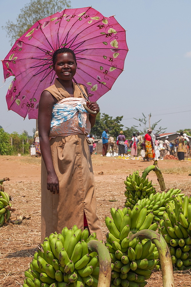 A lady selling bananas at the market shelters from the sun under a pink umbrella, Rwanda, Africa