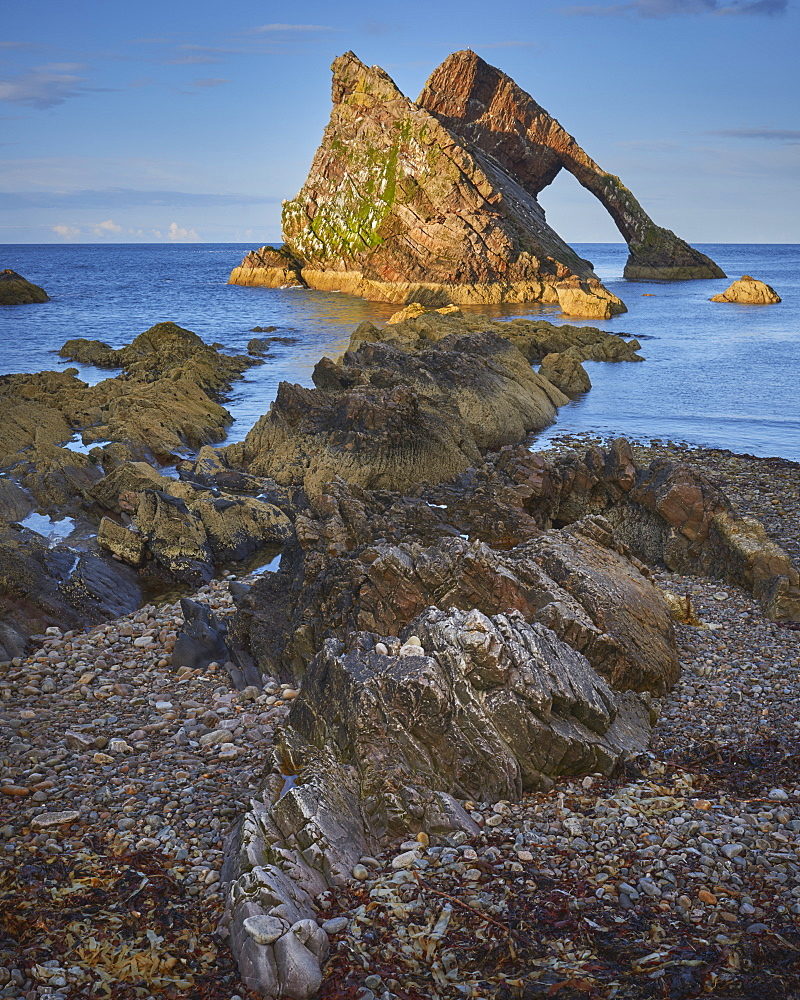Evening light on Bow Fiddle Rock, Portknockie, Moray Coast, Scotland, United Kingdom, Europe - 1273-4