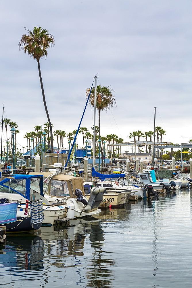 King Harbor, Redondo Beach, California, United States of America, North America - 1276-262
