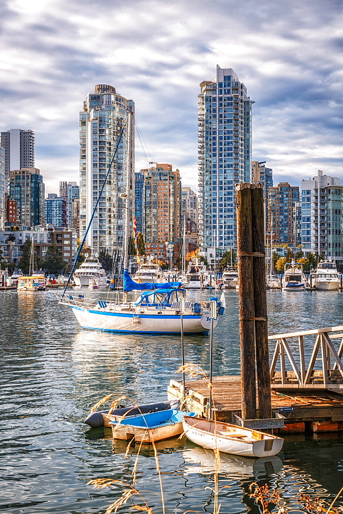 View of Vancouver skyline and False Creek in autumn, Vancouver, British Columbia, Canada, North America