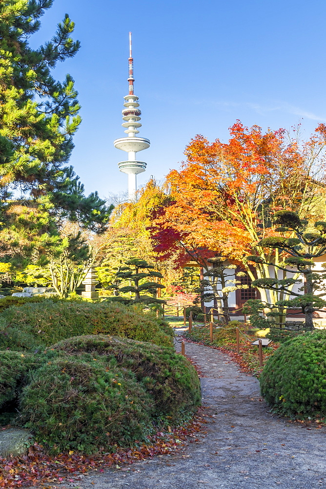 View from the Japanese Garden inside Planten un Blomen to the TV tower of Hamburg during autumn