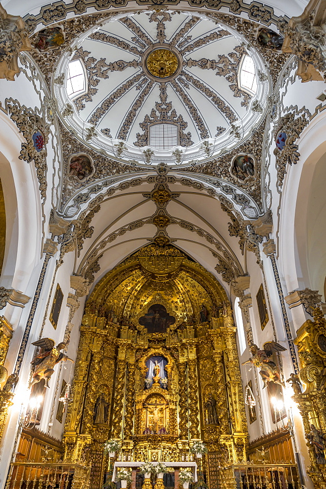 Interior of the San Francisco Church, Cordoba, Andalusia, Spain, Europe