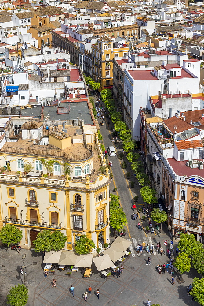 View from the Giralda Bell Tower down to the Virgen de los Reyes square, Seville, Andalusia, Spain, Europe