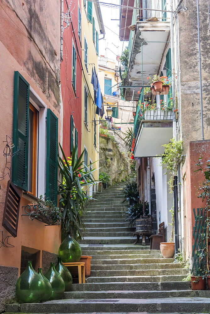 Colourful buildings and steps in Monterosso, Cinque Terre, UNESCO World Heritage Site, Liguria, Italy, Europe - 1284-142