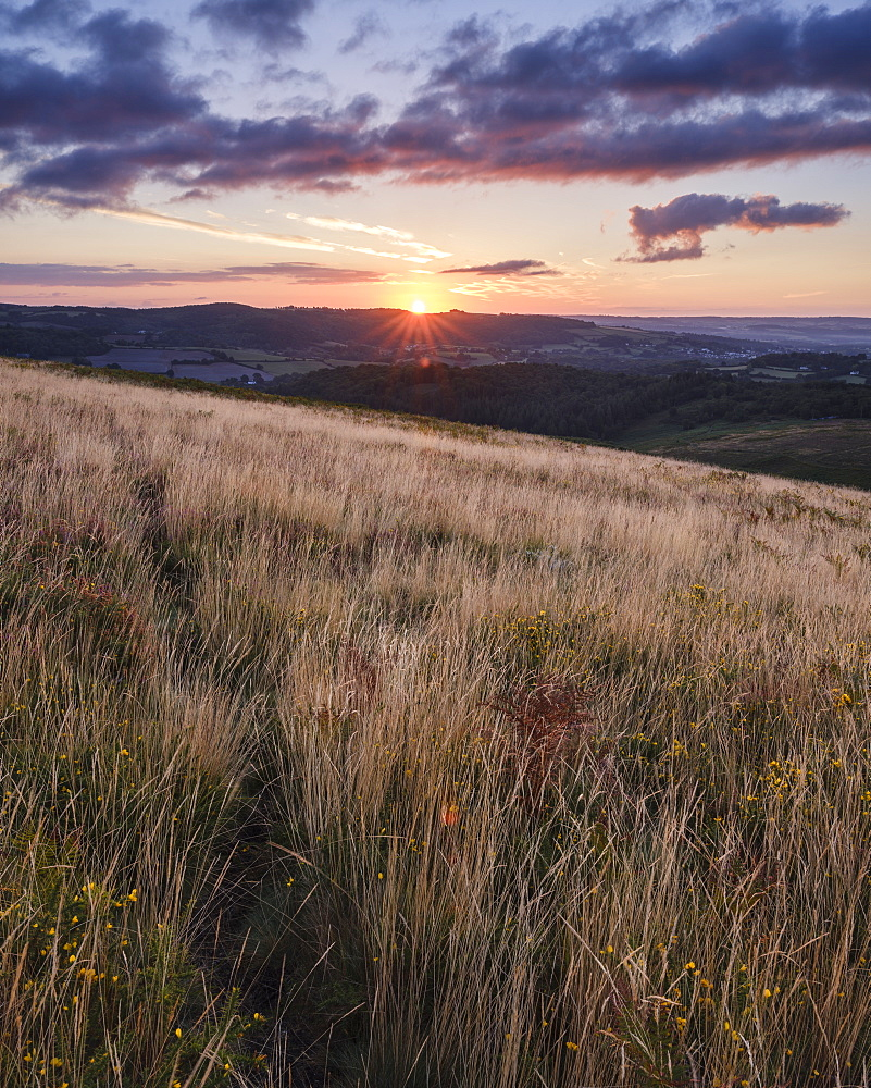 Sunrise from the grassy slopes of Trendlebere Down, Bovey Tracey, Devon, England, United Kingdom, Europe - 1295-92