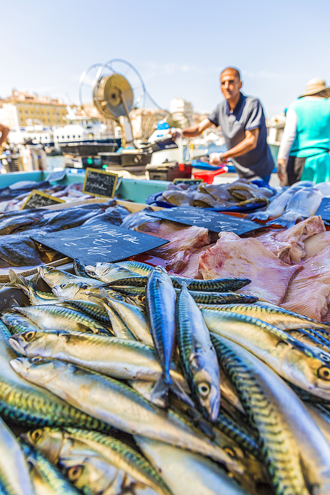 Fish market in the Old Port in Marseille, Bouches du Rhone, Provence, Provence Alpes Cote d'Azur, France, Mediterranean, Europe