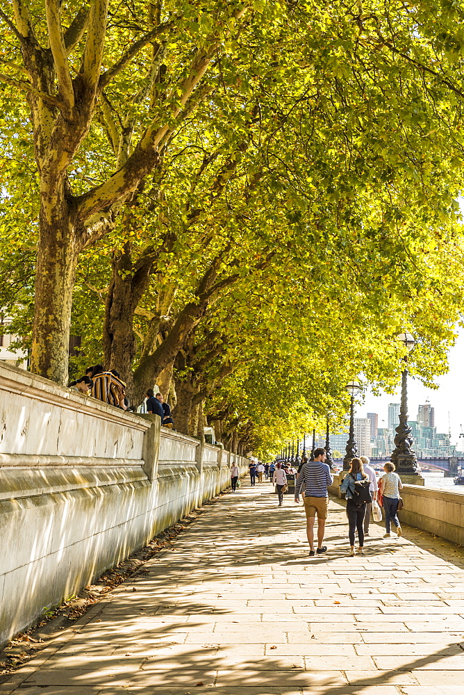 A path along the River Thames, London, England, United Kingdom, Europe