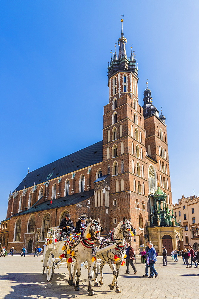 St. Mary's Basilica in the main square in the medieval old town of Krakow, UNESCO World Heritage site, in Krakow, Poland, Europe