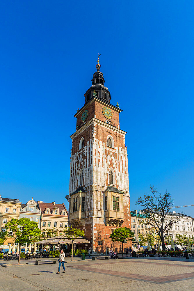 Town Hall Tower in the Main Square in the medieval old town, a UNESCO World site, in Krakow, Poland, Europe