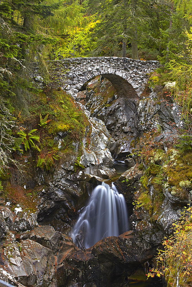 Autumn at the Falls of Bruar, Perthshire, Scotland, United Kingdom, Europe