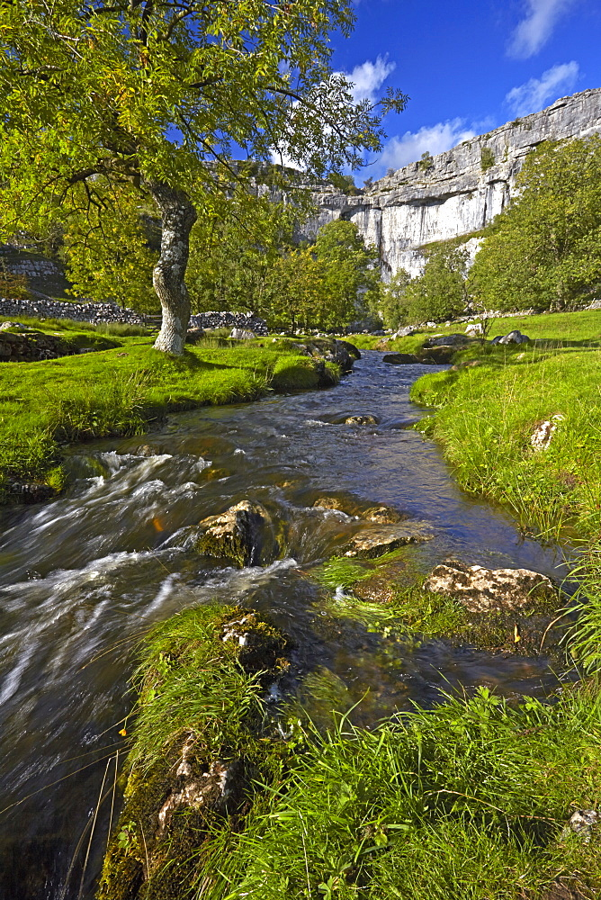 A view of Malham Cove in Malhamdale, Yorkshire Dales National Park, North Yorkshire, England, United Kingdom, Europe