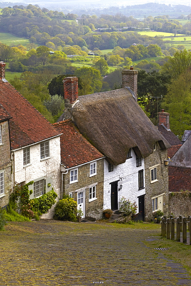 Classic English cottages besides the cobbled street of Gold Hill, Shaftesbury, Dorset, England, United Kingdom, Europe
